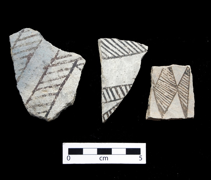 Gallup Black-on-white Sherds