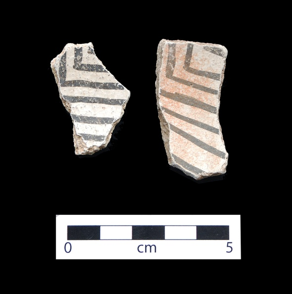 White Mound Black-on-white Sherds