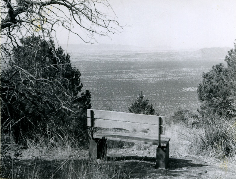 Bench Overlooking the San Rafael Valley