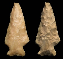 Rose Spring Projectile Point