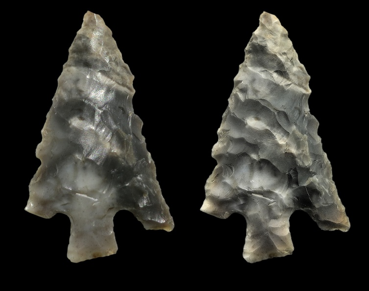 Rosegate Series Point
