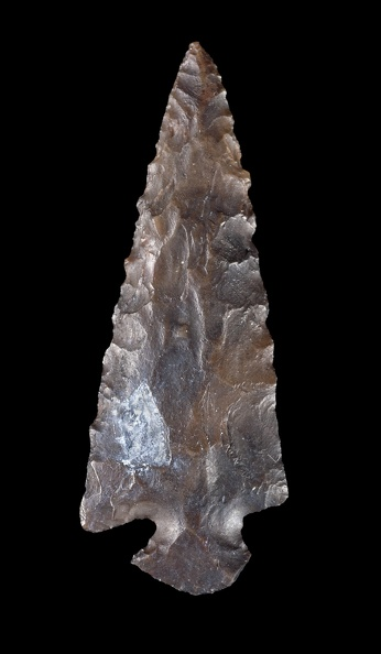Probable Rose Spring Point