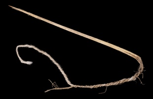 Yucca Needle with Cotton Thread