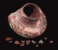 Tonto Polychrome Jar and Sherds