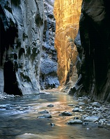 Zion Narrows, the Confluence