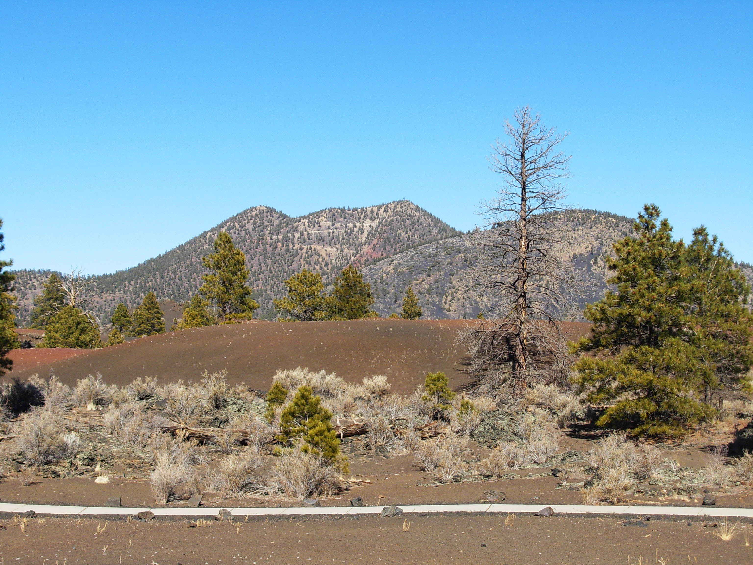 O'Leary Peak is a dome volcano