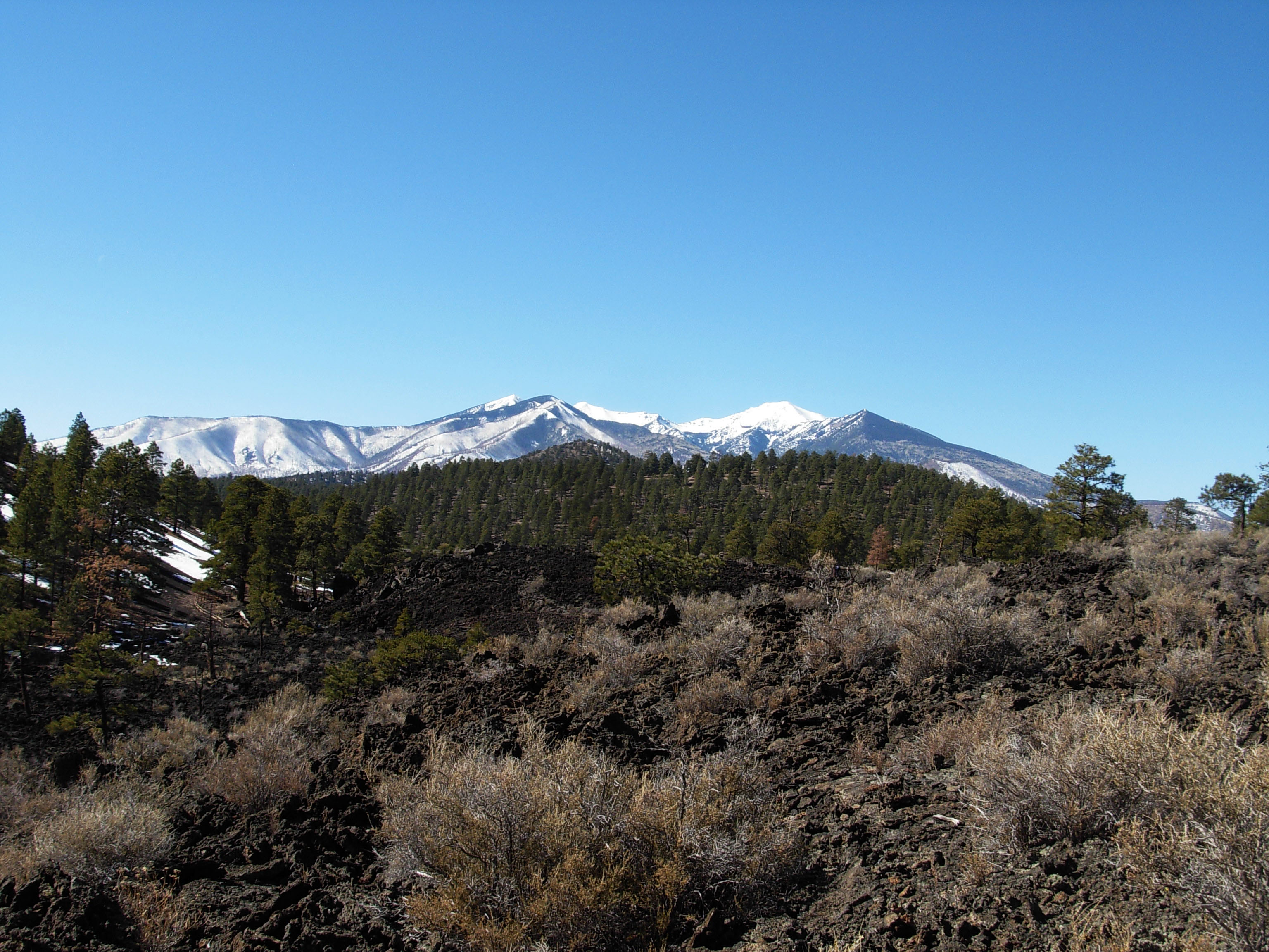 The San Francisco Peaks began as a stratovolcano