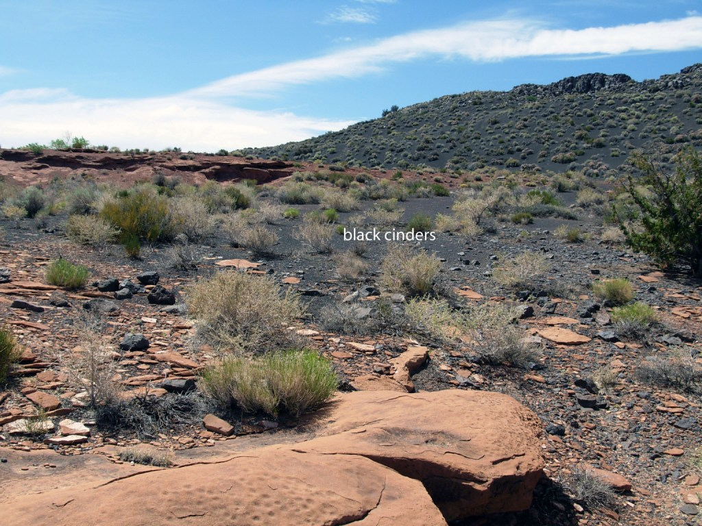 Black cinders that fell on the Wupatki area during the Sunset Crater eruption