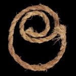 Yucca cordage