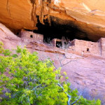 Cliff dwellings at Navajo National Monument