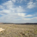 Staked Plains, Southern High Plains