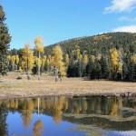 Pond in Bandelier National Monument