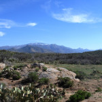Basin and range topography near Oracle, Arizona