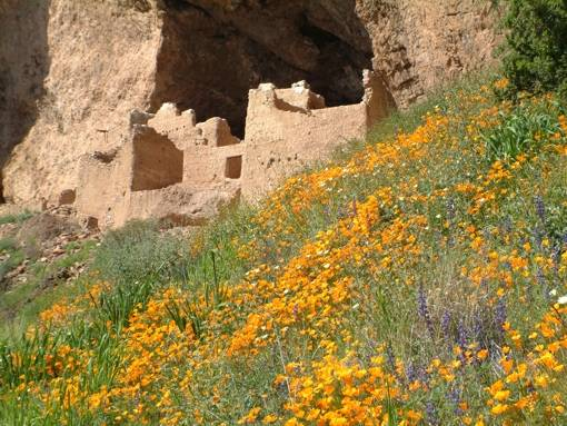 Upper Cliff Dwelling, Tonto National Monument. Photo Credit: National Park Service. Click the image to open the Tonto NM gallery.