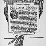 Nature Notes Volume 6 Issue 2