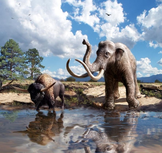 Recreation of the Pleistocene environment of Wupatki National Monument